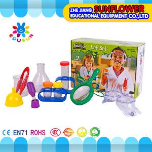 Chilidren Primary Science Kit Lab Set for Preschool
