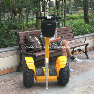 Big Wheels Standing Scooters, 2 Wheel Electric Balancing Scooter pictures & photos