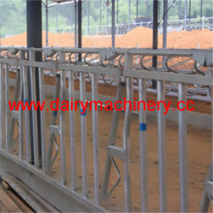 Galvanized Steel Pipe Cow Headlock for Cow Farm Equipment pictures & photos