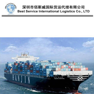 Ocean Shipping Agent Service as Door to Door From China to Worldwide (FCL Container 20′′40′′) pictures & photos