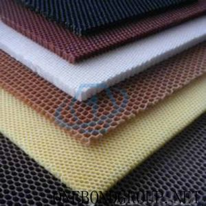 Multicolor PP Honeycomb Core for Building Decoration pictures & photos