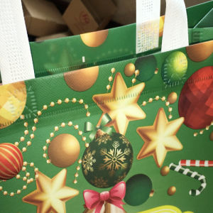 Decorative Printed Paper Christmas Gift Bag in Stock pictures & photos