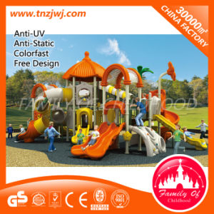 Residential Kid Slide Playground Equipment Outdoor Playground pictures & photos
