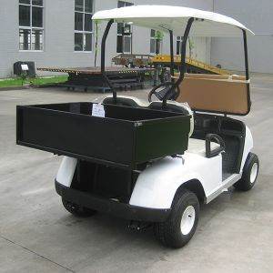 CE China Factory 2 Seater Electric Golf Cargo Cart (DU-G2) pictures & photos