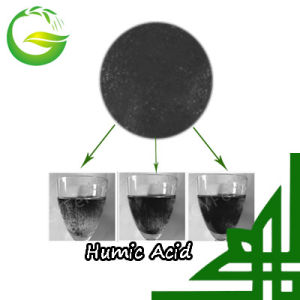 Top Quality Organic Fertilizer Potassium Humate pictures & photos
