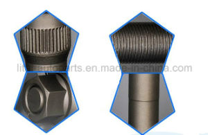 Zin Plated Silver Color Actor Wheel Hub Bolt for Benz pictures & photos