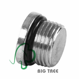 SAE O-Ring Boss Orb to Stainless Steel Socket Plug pictures & photos