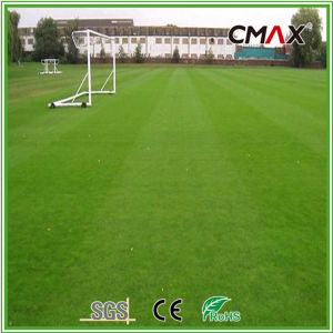 35mm Landscaping Artificial Grass Decoration Crafts pictures & photos