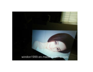 Rear Projection Film / Holographic Film / Window Advertisement Screen pictures & photos