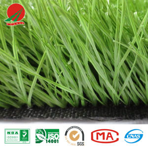 High-Quality Artificial Grass with Stem in Two Side
