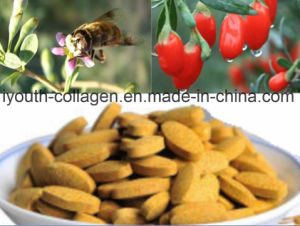 100%Natural Medlar Bee Pollen Tablet/Health Food Nutrition Organ, Prolong Life pictures & photos