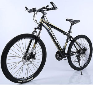 China Bike Factory Wholesale Mountain Bike / Mountain Bicycle pictures & photos