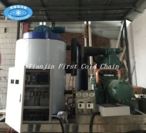 Good Quality Ice Flake Machine for Singapore From 1ton to 60tons pictures & photos