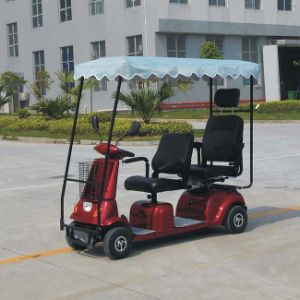 Electric Tricycle with Covered Dl24800-4 with CE pictures & photos