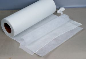 PTFE Membrane with Pet Filter Media (FH14T0204) pictures & photos