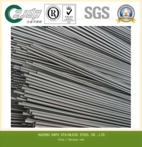Seamless Tyle Stainless Steel 309S Steel Pipe Steel Tube pictures & photos