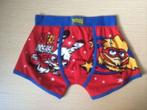 Boy Boxer Brief with Colorful Cartoon Allover Printed pictures & photos
