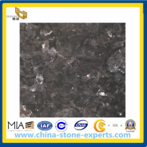 Natural Stone Blue Pearl Granite Tiles for Flooring Steps/Stairs (YQG-GT1014) pictures & photos