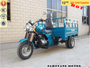 Five Wheel Cargo Tricycle Heavy Load 3 Wheel Motorcycle Trike 150cc 250cc 200cc 300cc Three Wheel Motorcycle Cargo Tricycle pictures & photos