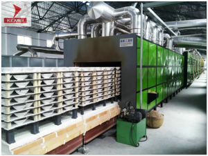Roller Kiln for Ceramic Giftware pictures & photos