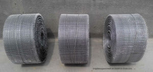 AISI304/316 Twilled Weave Wire Mesh pictures & photos