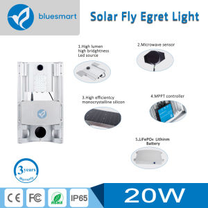 Solar LED Street Light with Motion Sensor pictures & photos