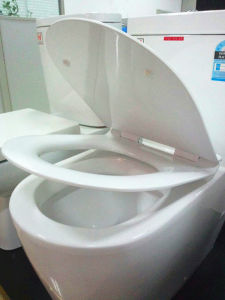 Watermark Washdown Round UF Seat Cover One Piece Toilet (1032) pictures & photos