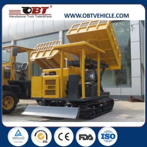 Rubber Track Site Dumper for Swamp pictures & photos