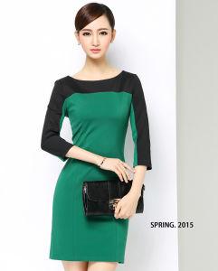 OEM Plus Size 2015 Winter Elegant Office Women Slim Dress pictures & photos
