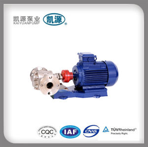 2cy/KCB Gear Oil Pump pictures & photos