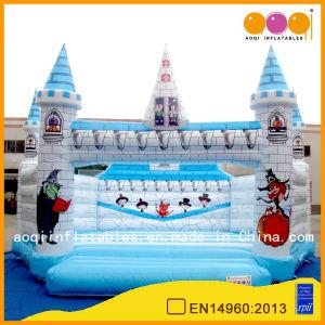 Amusement Park Equipment Witch Castle Bouncer (AQ586) pictures & photos