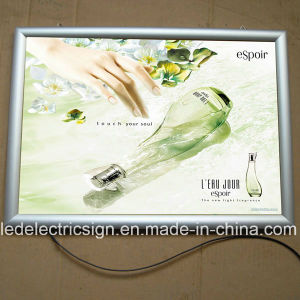 High Quality Light Box for Advertising Display pictures & photos