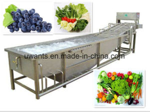 Brush Washing Machine for Potato and Ginger pictures & photos