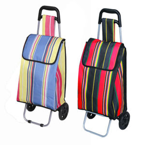 Best Selling Folding Shopping Cart Trolley (SP-525) pictures & photos