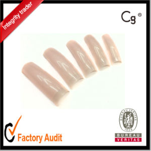 Nature Color Professional Nail Tip, Wholesale OEM and ODM Accept pictures & photos