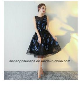Elegant Black Cocktail Dresses Evening Gowns pictures & photos