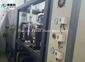 High Efficiency Freeze Dryer/Fruit Drying Machine Low Price pictures & photos
