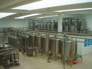 300L Craft Brewing Beer Equipment (ACE-FJG-Y6) pictures & photos