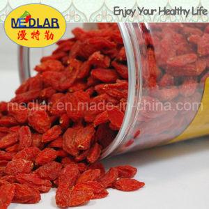 Medlar Organic Food Red Goji Berry
