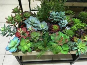 Best Selling Artificial Plants of Succulent Gu20170520125928 pictures & photos
