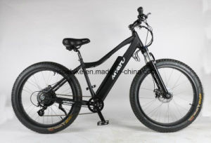 8fun Fat Ebike with Rear Motor with Samsung Battery pictures & photos