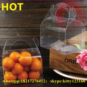 China Transparent Clear PP Folding Plastic Moving Boxes Wholesale with Carry Handles pictures & photos