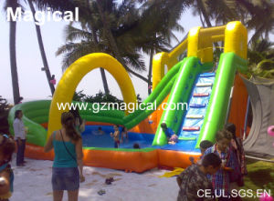 Kids Amusement Park Inflatable Water Slide with Pool (PP-080) pictures & photos
