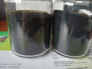 Flake Form Soluble Seaweed Extract pictures & photos