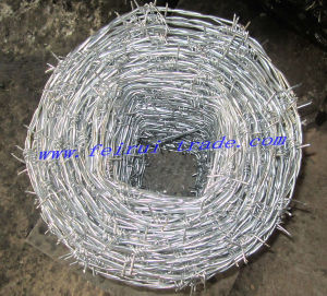 Hot Dipped Galvanized Barbed Wire/PVC Coated Barbed Wire Bwg 14X16 pictures & photos