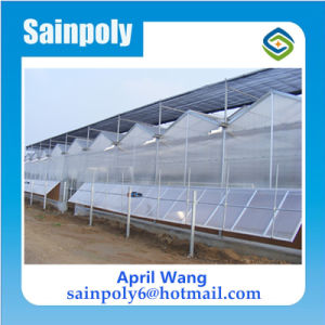 PC Sheet Hydroponic Systems Green House for Tomato pictures & photos