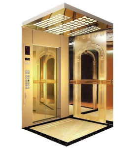 Colored Stainless Steel Etched Passenger Elevator with Good Quality pictures & photos