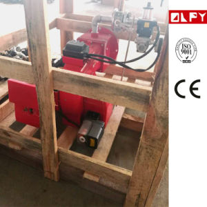 New Type Combustible Gas Burner with High Efficiency in Boiler pictures & photos