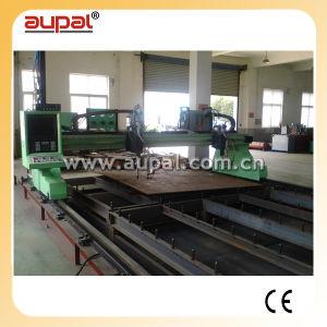 CNC Gantry Type Flame&Plasma Cutting Machine (AUPAL-3000/4000/5000/6000)