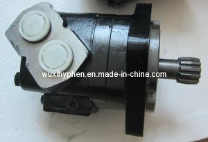 Hydraulic Motor Bearingless Type Bm6s195, Bm6s245, Bm6s310 pictures & photos